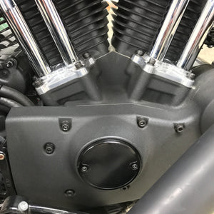 The Diamond Range Harley-Davidson Sportster Black Stainless Engine Bolt Kit