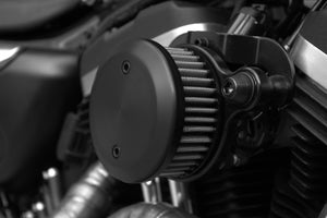 The Diamond Range Vivid Harley-Davidson Sportster Air Cleaner Assembly