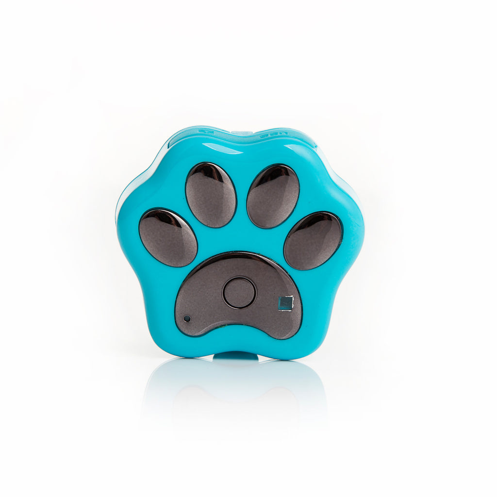 Wifi Pet GPS Tracker For Dogs and Cats