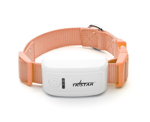 Real Time Pet Tracking Device