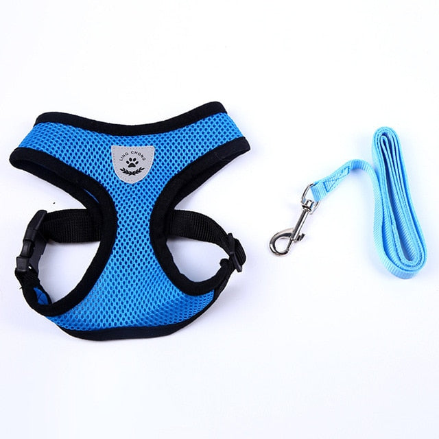 Dog Training Collar With Breast Band Leash