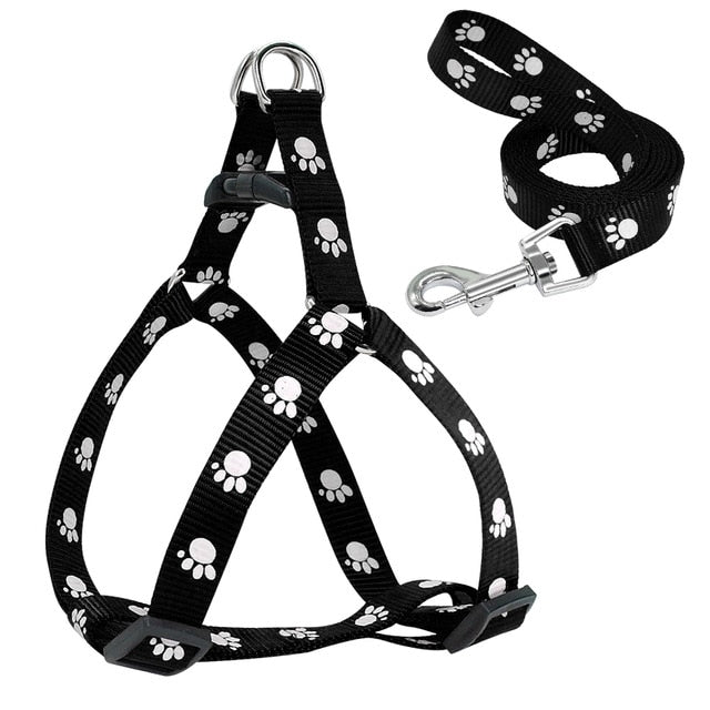 Paw Print Dog Harness and Leash