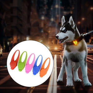 Dog Collar LED Pendant