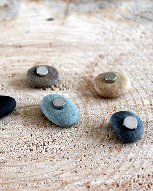 Five River Stone Magnets