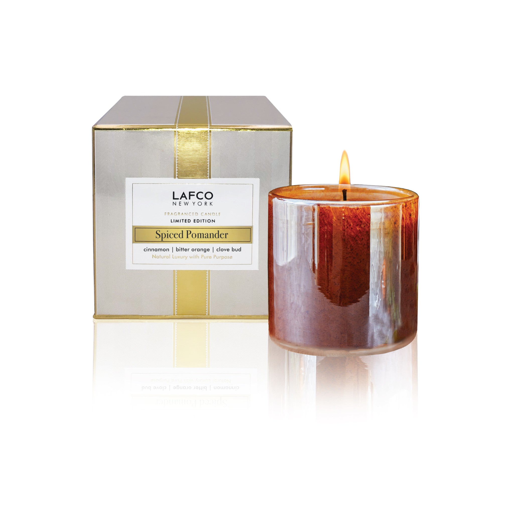 Spiced Pomander Classic Candle