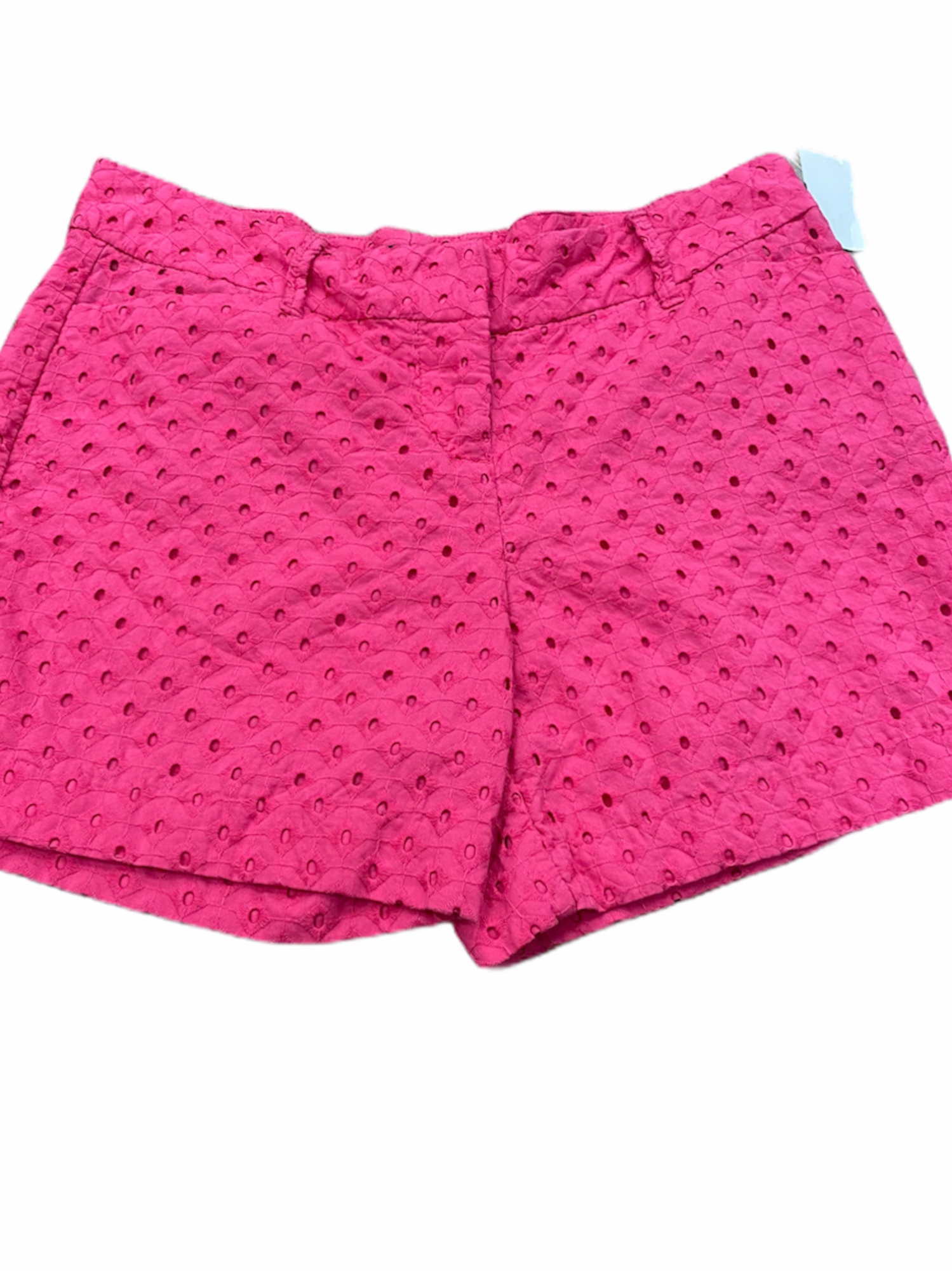 The Limited Shorts Size 4 (27)