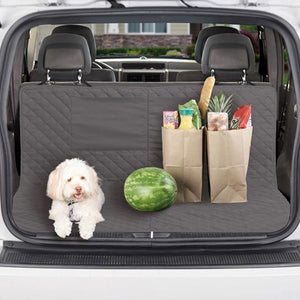 Dog and groceries sitting on protector in trunk of a car