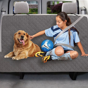 Teenager and dog sitting on protector in backseat of a car