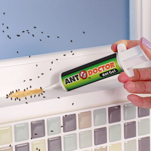 Demonstration of Ant Doctor being squeezed from tube onto ants on a wall