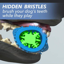 "Load image into Gallery viewer, Closeup of a dog's mouth chewing Chewbrush, includes the text ""Hidden bristles brush your dog's teeth while they play"""