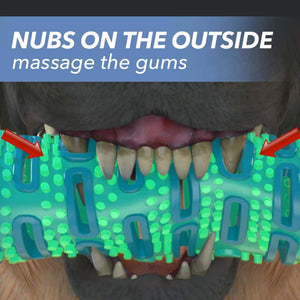 "Closeup of a dog's mouth chewing Chewbrush, includes the text ""Nubs on the outside massage the gums"""