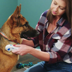 Woman using Flea Doctor on dog