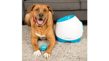 Load image into Gallery viewer, Ifetch Too Ball Launcher Dog Toy image from BulbHead
