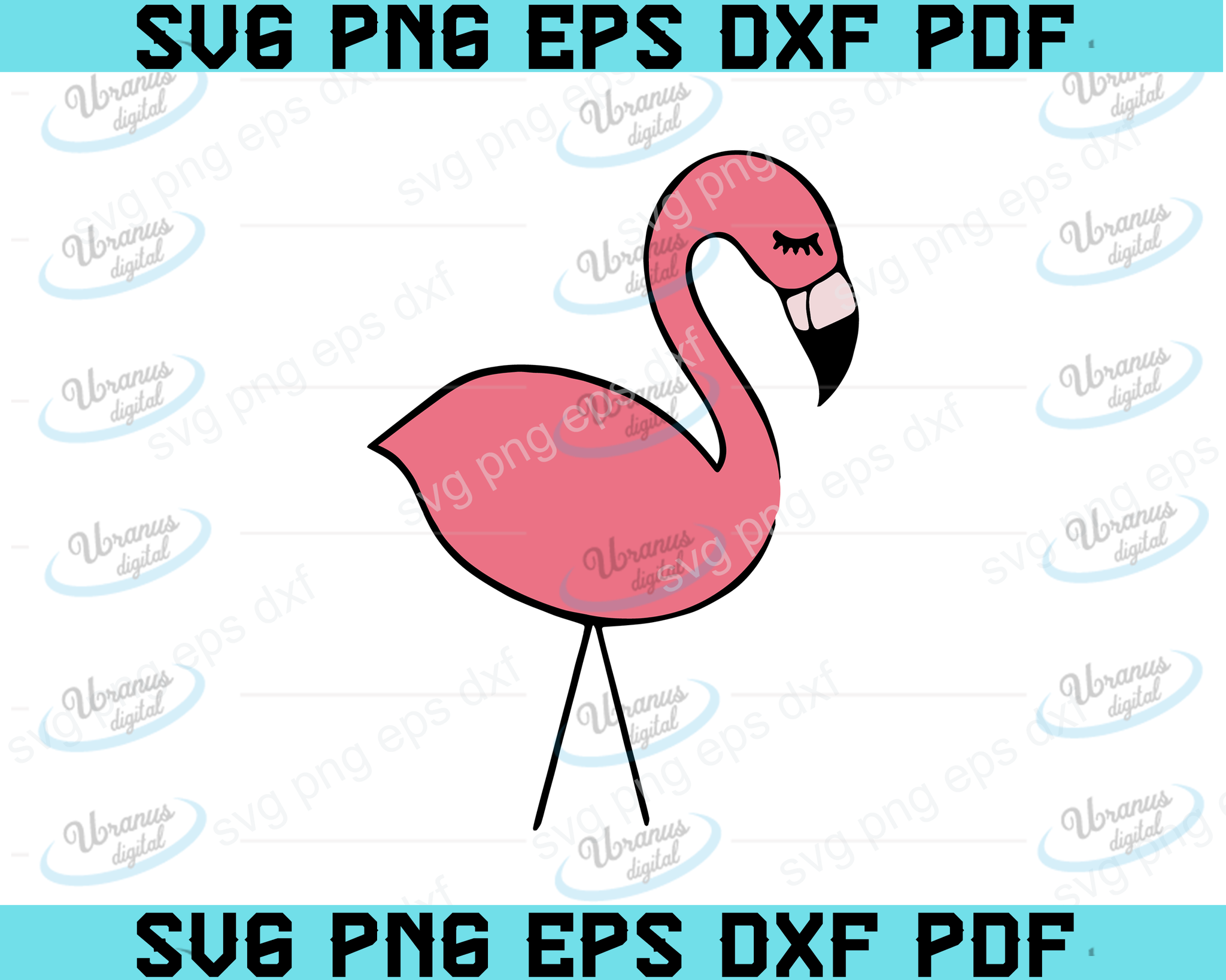 flamingo svg, Flamingo Quote SVG, Flamingo SVG, Flamingo Cut File