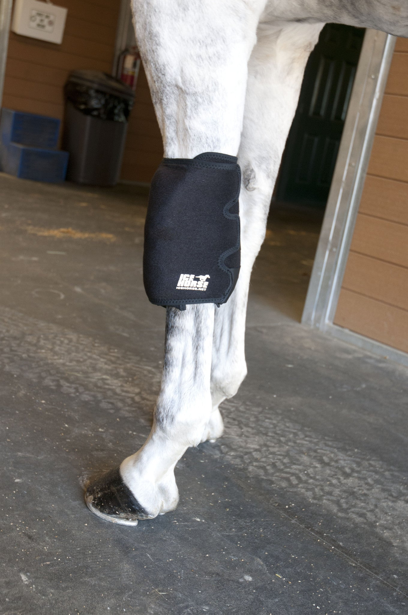 Horse Knee Wrap to Prevent Knee Injuries in Horses   IceHorse
