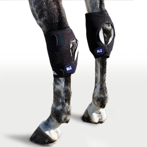 Image of Hock Wraps