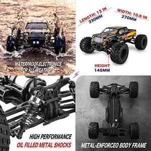 1:10 Scale Remote Control Car 48+ km/h