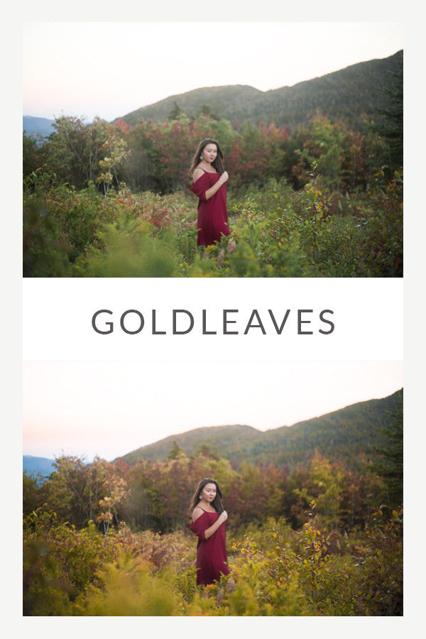 GoldLeaves