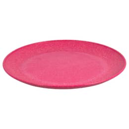 Eco friendly 10 inch plate