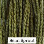 Bean Sprout