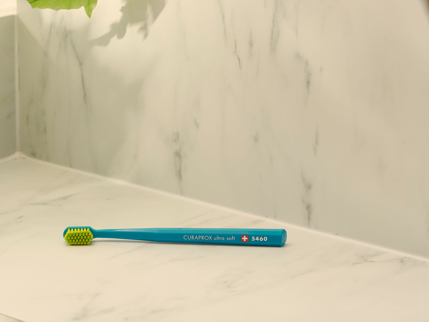 The importance of replacing your toothbrush every three months