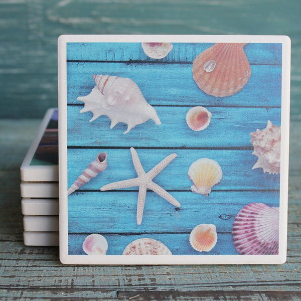 Coaster Scattered Sea shells