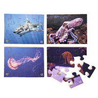 Sea Creatures Set of 8