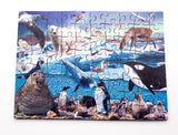 Polar Regions - Available 24 or 80 pieces