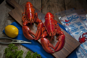 Frozen Cooked Lobster (Whole) - S&J Fisheries