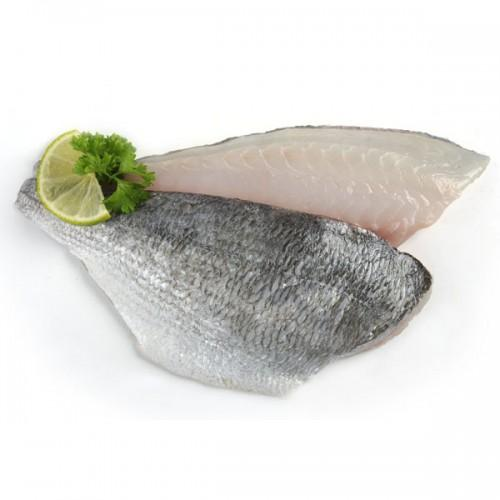 Frozen Gilt-Head Bream Fillets - S&J Fisheries