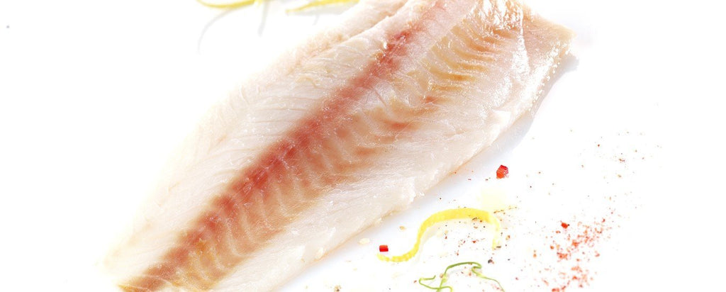 Frozen Haddock Fillets (2) - S&J Fisheries