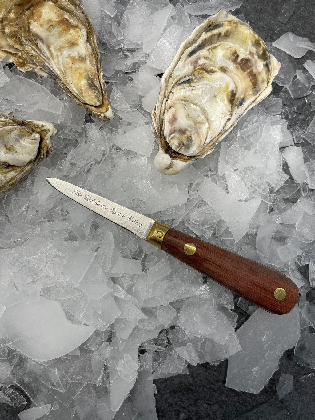Oyster Knife - S&J Fisheries
