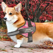 Load image into Gallery viewer, Personalised Dog Harness