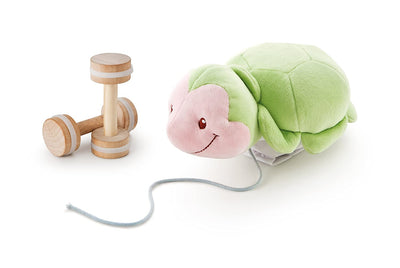 Happy Days Pull Along Turtle - 19cm