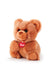 Fluffies Bear New - 24cm