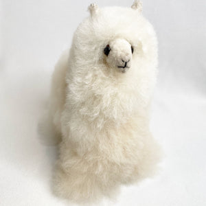 Alpaca stuffed animal M20