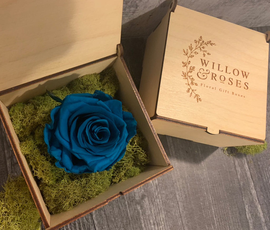 BLUE ROSE, LIMITED EDITION