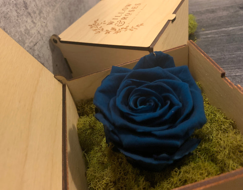 DARK BLUE ROSE, LIMITED EDITION
