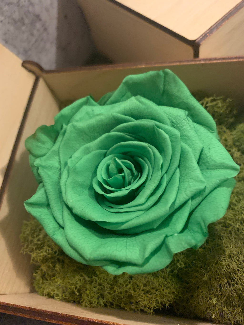 GREEN ROSE, LIMITED EDITION