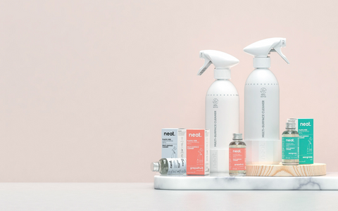 Zero Waste Shop Products Cleaning Spray Bottle