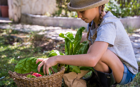 Eco Friendly kids activities grow your own