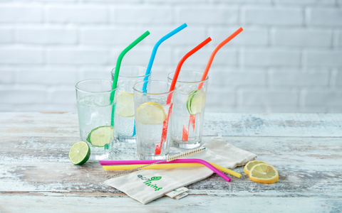 Eco Friendly Products Plastic Free Straws