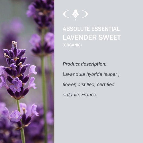 Lavender Sweet Organic Oil - Absolute Essential