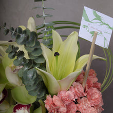 Load image into Gallery viewer, Cymbidium with Carnations