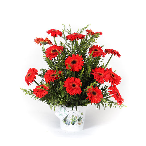 Red Gerbera in Can Vase