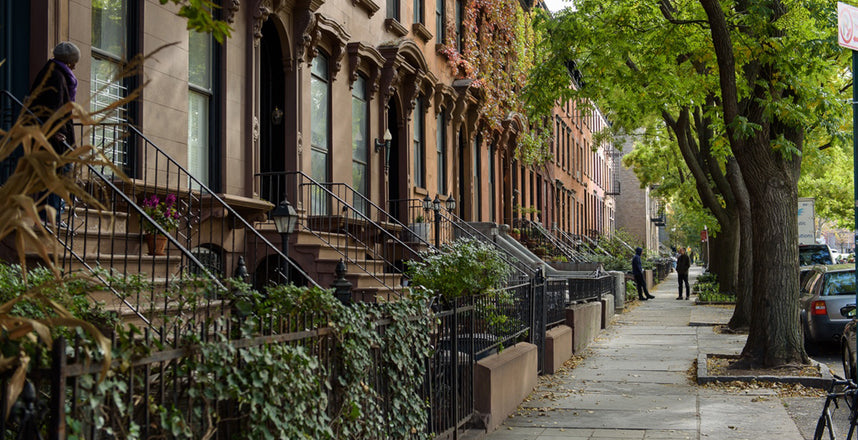 Fort Greene Guide: The Quintessential Brooklyn Dream