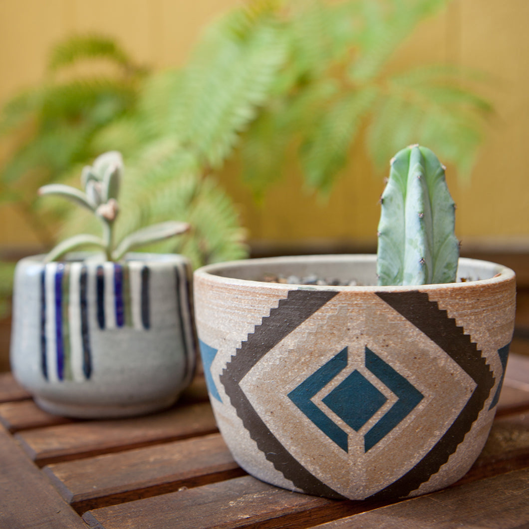 Two of Jennifer's pieces being used to hold cacti.