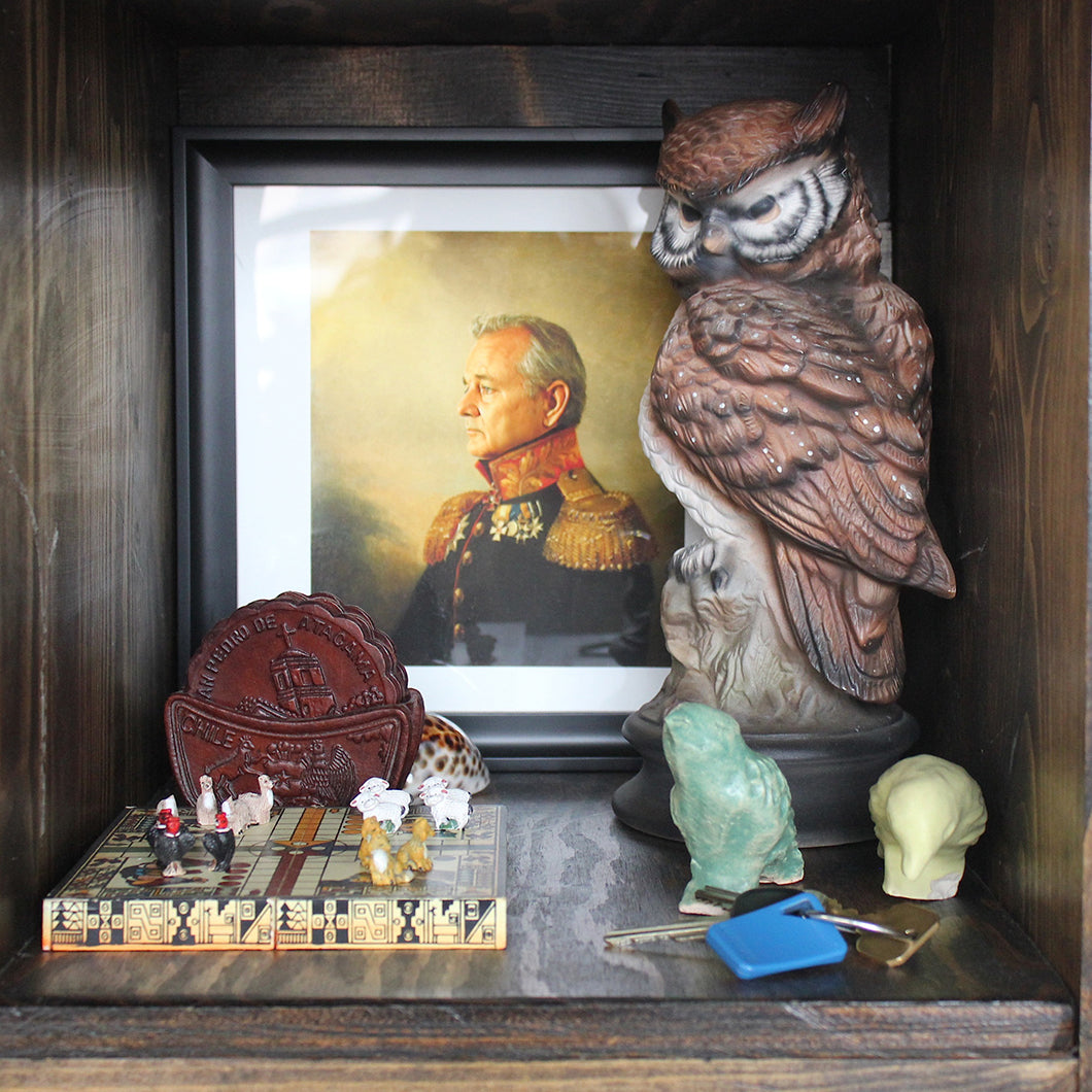 A photo of Bill Murray, Krystal's keys, and a ceramic owl from her grandmother decorate one of her shelves.