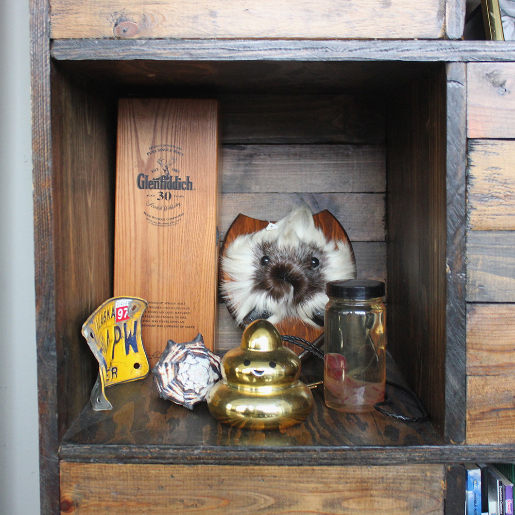 A golden poop bank and baby in a jar are among a few of the unique trinkets Krystal has collected.