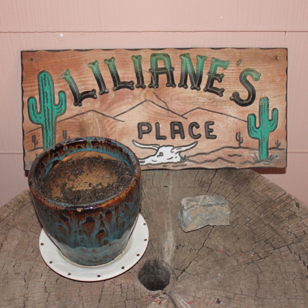 Liliane's Place sign.